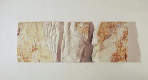 Ossa di Shelley, Petrarca Rime, 1996, 83 x 30 x 7 cm