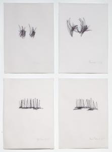 Un minuto e 15 secondi di sguardo dei disegnatori, 2013, 21 x 29,7 cad., Pennarello su carta da lucido