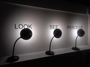Look, See, Perceive