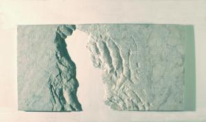 Ossa di Shelley, Montale, 2006, 110 x 55 x 3 cm