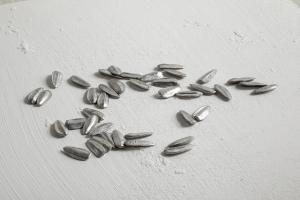 David Rickard, A handful of seeds, 2020, stagno antimonio, rame, piombo