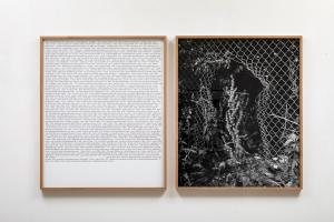 Antonio Rovaldi Notes for a book (Dear Michael), 2018,1 stampa in bianco e nero su carta baritata, 90x74 cm 1 stampa inkjet su carta, 90x74 cm