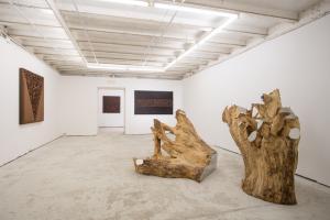 L'orizzonte rovesciato, Ivan Barlafante, 2016, installation view