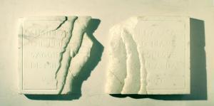 5) Ossa di Shelley, Omero Odissea V (Pindemonte), 2008, 100 x 46 x 5 cm