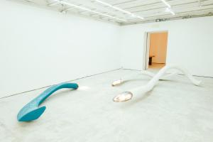 Linger,installation view, Sala 2, Martino Genchi, 2016. Courtesy the artist and Galleria Michela Rizzo